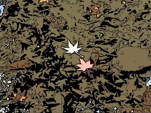 水面に紅葉2枚-2.jpg