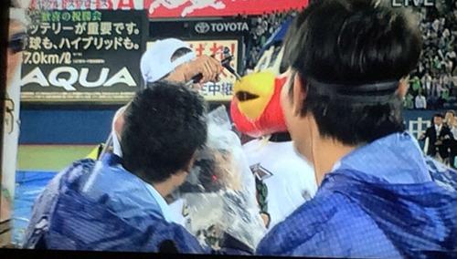 blog-292スワローズビールかけ2015.jpg