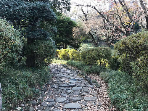 blog-310有栖川公園の小径.jpg