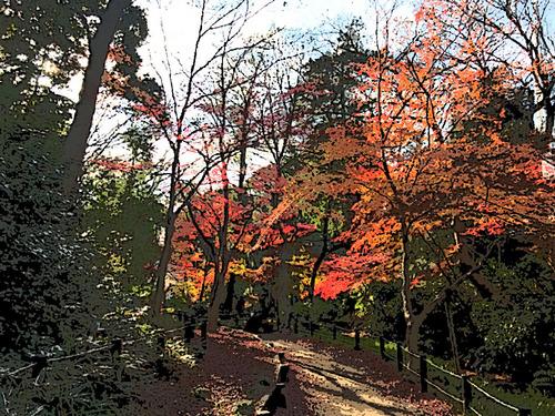 有栖川公園の紅葉-2-ポスタリ&はね&粒状.jpg