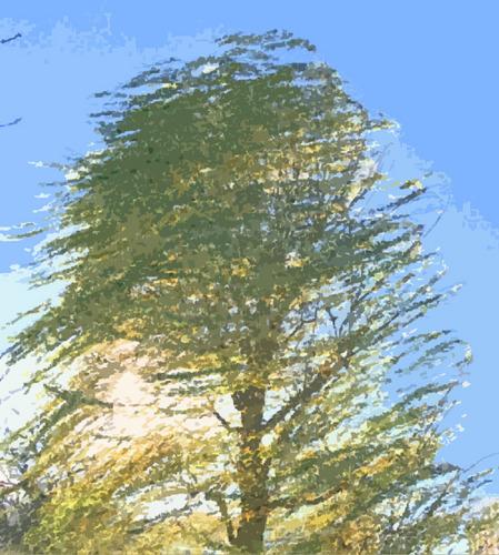 風に揺れる柳-wb&カットアウト.jpg